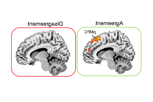 Image of brain scans showing 日e area 'pmfc' light up on 'agreement' condition and not light up on 'disagreement' coNDition